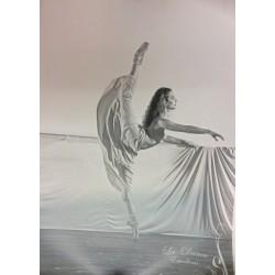Posters danza